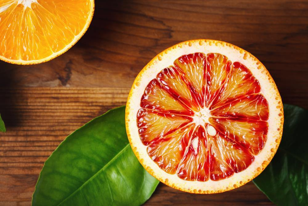 Best Oranges For Juicing | Our Top Picks